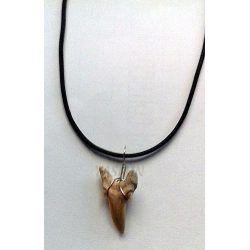 colgante-diente-tiburon.jpg