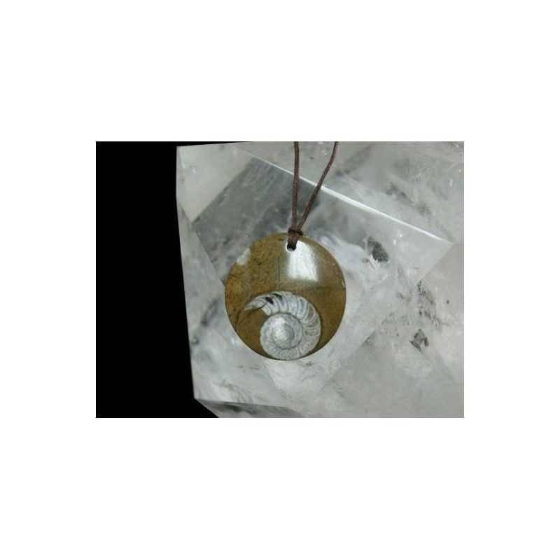 colgante-amonite-disco.jpg
