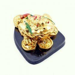 rana feng shui de resina, dorada, también conocido como sapo lunar de tres patas, con moneda en la boca