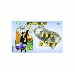 sahumerio lluvia de dinero, para atraer a la fortuna a nuestra vida.